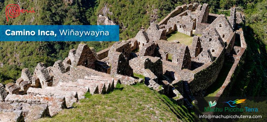 wiñaywayna camino inca