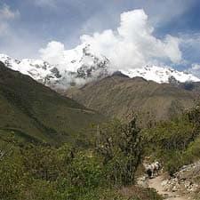 Nevados del Cusco y el Camino Inca